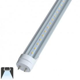 Tube LED T8 10W 60cm couvercle transparent - Blanc froid 6000K