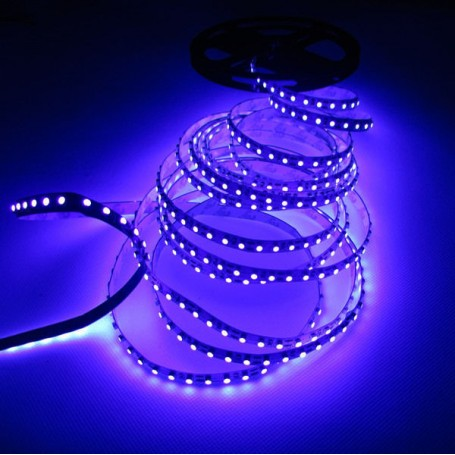 Ruban LED lumière noire UV