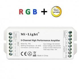 Amplificateur RGBW