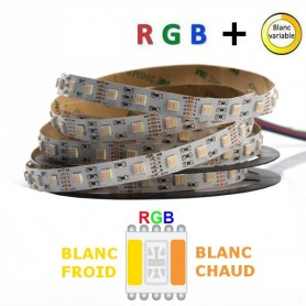 Ruban LED 12V 5050 RGB + blanc variable