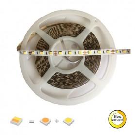 Ruban LED blanc chaud et froid