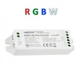 Contrôleur multizones RGBW 12A 12/24V