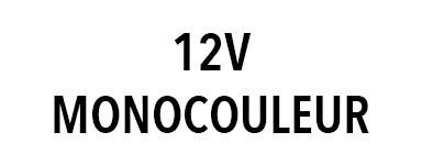 Projecteur 12V monocouleur